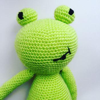 Obrázek pan žabák
