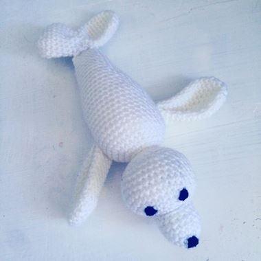 Obrázek z tuleň